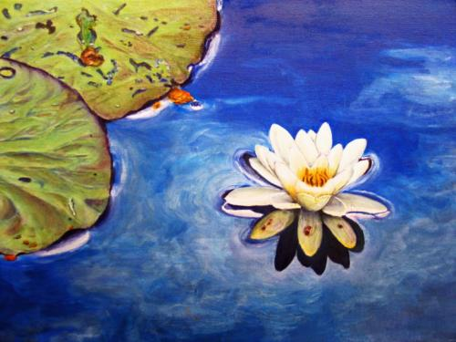 Waterlily, Hyltemasa